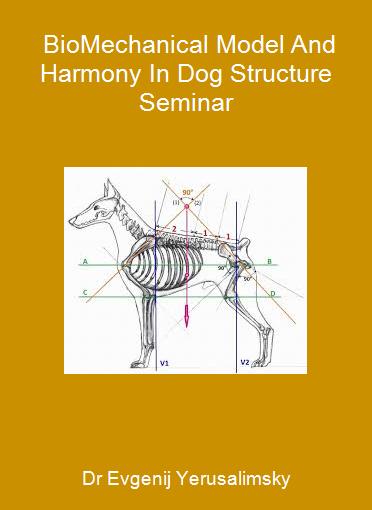 Dr Evgenij Yerusalimsky - BioMechanical Model And Harmony In Dog Structure Seminar