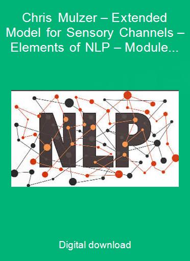 Chris Mulzer – Extended Model for Sensory Channels – Elements of NLP – Module 02